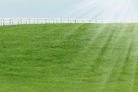 草原と太陽光