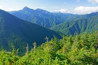 長野県 双児山から北岳左の山と南アルプスの山々