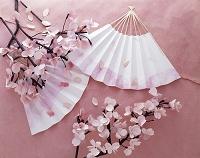 桜 ペーパークラフト