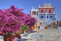 ギリシャ ミコノス島 カラフルな家