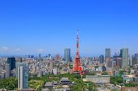 東京都 東京タワーと都会の街並