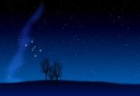 オリオン座 星空 木シルエット