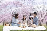 お花見でお弁当を広げる家族