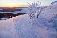 北海道 日の出に染まる美幌峠と霧氷 美幌町