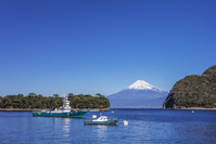 静岡県 御浜岬と富士山