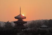 奈良県 法起寺と夕日