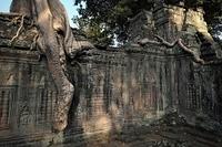 カンボジア シェムリアップ