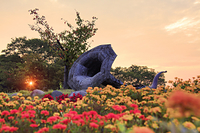 長野県 上田市 信州国際音楽村 マリーゴールドなどの花畑とホ...