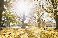 黄葉とシニア夫婦
