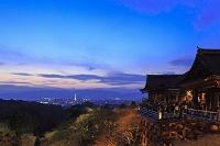 京都府 京都市 清水寺 ライトアップ