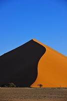 ナミビア ナミブ砂漠 ナウクルフトNP