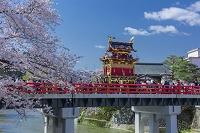 岐阜県 春の高山祭