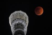 東京都 皆既月食とスカイツリー