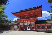 京都府 下賀茂神社