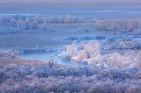 北海道 釧路湿原霧氷の朝