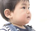日本人の幼児の横顔