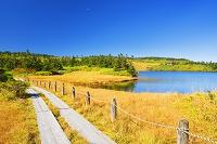 岩手県 八幡平 十和田八幡平国立公園