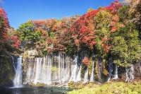 静岡県 白糸の滝