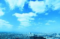 東京都 都庁から街並み展望