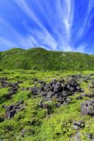 長野県 坪庭より新緑の北横岳を望む 八ヶ岳