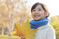 紅葉の中、落ち葉を持つ6歳の日本人の女の子