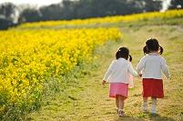 菜の花畑の中の子供