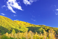 長野県 秋の乗鞍高原一の瀬園地