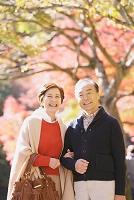 紅葉の季節に旅行をするシニア夫婦