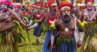パプアニューギニア ゴロカ ゴロカショー