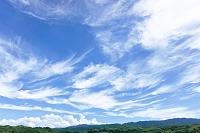 大阪府 和泉市 青空と雲と緑の山並 入道雲と筋雲