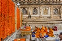 インド マハボディ寺院
