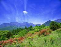 山梨県 美し森から望む初夏のつつじと八ヶ岳