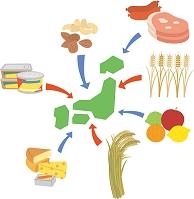 外国産農畜産物の輸入