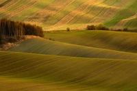 チェコ 南モラヴィア州