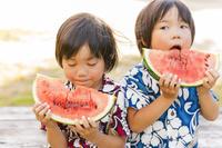 スイカを食べる双子の兄弟