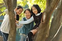 埼玉県 樹の上の日本人の女の子