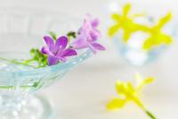 ベルフラワーと水仙の花