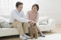 犬とじゃれ合う夫婦
