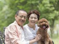 シニア夫婦とトイプードル 犬