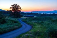 岡山県 黎明の道と高原