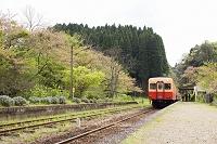 千葉県小湊鉄道の風景
