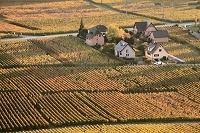 フランス ワイン街道