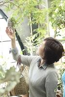 グリーンショップでショッピングするミドル日本人女性