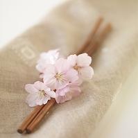 箸に添えた桜