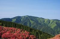奈良県 葛城山