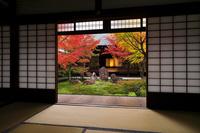 京都府 建仁寺 小書院から見る潮音庭の紅葉と大書院