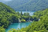 クロアチア プリトヴィツェ湖群国立公園 湖と森