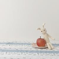リンゴの横に座るウサギ