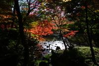 東京 小石川後楽園