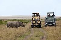 ケニア マサイマラ国立保護区 クロサイとジープ